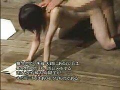 Musculoso oso mujer caliente, videos caseros de esposas cojiendo